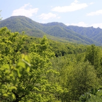 Ecological path in the mountainous Adygea <br />«By the trails of the wild cat» - Spiritual Life Sacraments