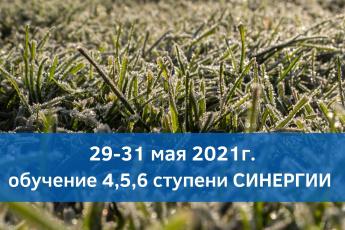 29-31 мая 2021г. он-лайн обучение Синергии 4,5,6 ступени